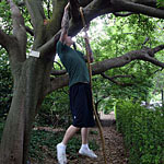 Rope climbing in the park